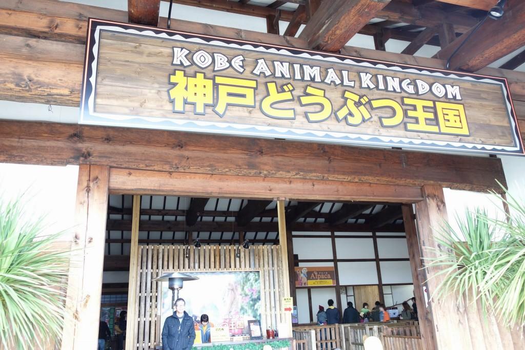 神戸どうぶつ王国は動物とふれあい放題!カピバラもハシビロコウもいるぞ!